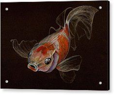 Acrylic Print featuring the drawing Goldfish by Heidi Kriel
