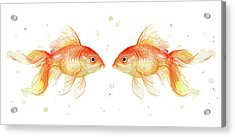 Goldfish Love Watercolor Acrylic Print by Olga Shvartsur