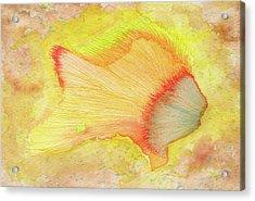 Goldfish - #ss16dw039 Acrylic Print by Satomi Sugimoto