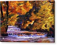 Goldstream River Acrylic Print by David Lloyd Glover