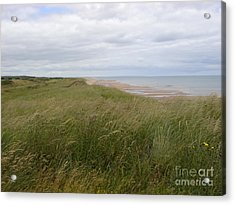 Golf In Scotland Acrylic Print