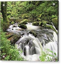 Golitha Falls Acrylic Print