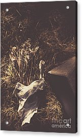 Gone And Forgotten Acrylic Print