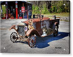Gone To The Dogs Acrylic Print by Rick Friedle