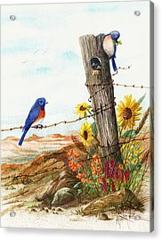 Gonna Find Me A Bluebird Acrylic Print by Marilyn Smith