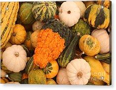 Good Gourd Acrylic Print