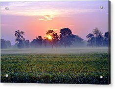 Good Morning Beautiful Acrylic Print by Brittany H