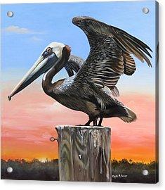 Good Morning Florida Acrylic Print
