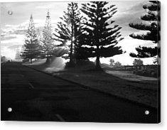 Good Morning Acrylic Print by Graham Hughes