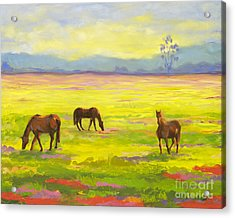 Good Morning Horses Acrylic Print by Amy Welborn