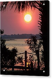 Good Morning Acrylic Print by Karen Wiles