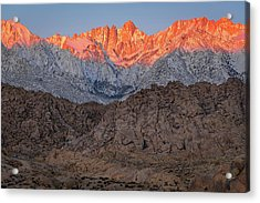 Good Morning Mount Whitney Acrylic Print