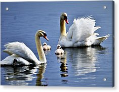 Good Parents Acrylic Print