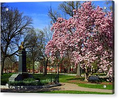 Goodale Park In The Spring Acrylic Print