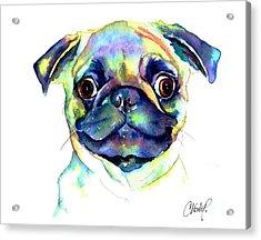 Google Eyed Pug Acrylic Print