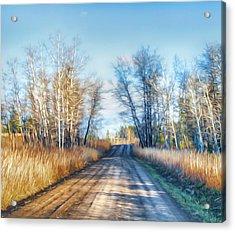 Acrylic Print featuring the photograph Goose Lake Road by Theresa Tahara