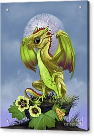 Acrylic Print featuring the digital art Gooseberry Dragon by Stanley Morrison