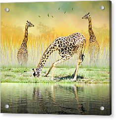 Acrylic Print featuring the photograph Gopher I Know I Saw A Gorpher by Diane Schuster