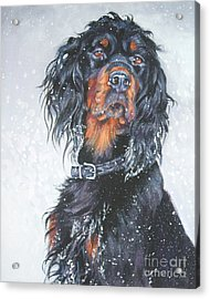 Gordon Setter In Snow Acrylic Print