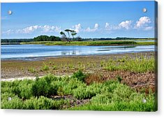 Acrylic Print featuring the photograph Gordons Pond At Cape Henlopen State Park - Delaware by Brendan Reals