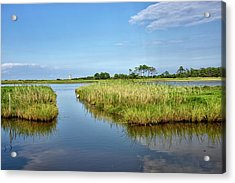 Acrylic Print featuring the photograph Gordons Pond - Cape Henlopen Park - Delaware by Brendan Reals