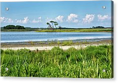 Acrylic Print featuring the photograph Gordons Pond - Cape Henlopen State Park - Delaware by Brendan Reals