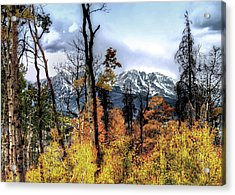 Gore Range Acrylic Print by Jim Hill