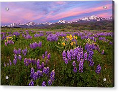 Acrylic Print featuring the photograph Gore Range Sunrise by Aaron Spong