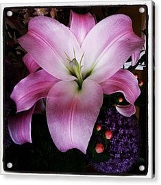 Acrylic Print featuring the photograph Gorgeous Flowers. Real. I Think They by Mr Photojimsf