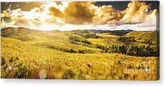 Gorgeous Golden Sunset Field  Acrylic Print by Jorgo Photography - Wall Art Gallery