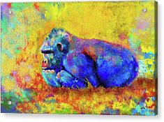 Acrylic Print featuring the photograph Gorilla by Test