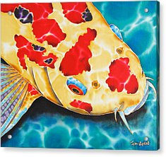 Goshiki Koi Acrylic Print by Daniel Jean-Baptiste