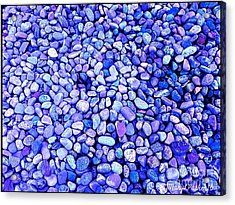 Got  The  Blues Acrylic Print by MaryLee Parker