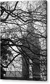 Gothic Acrylic Print by Gaspar Avila