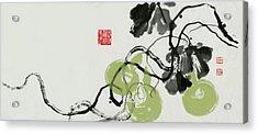 Gourd - 5 Acrylic Print
