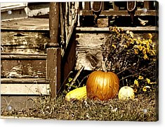Gourding The Porch Acrylic Print