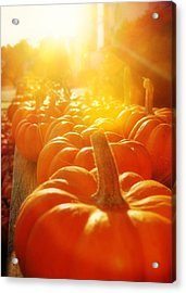 Gourds For Sale Acrylic Print by JAMART Photography