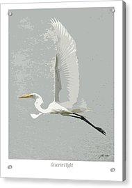 Grace In Flight Acrylic Print