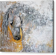 Abstract Horse Painting Graceful Beauty Acrylic Print