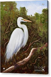 Graceful Egret Acrylic Print