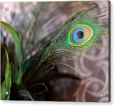 Graceful Peacock Feather Acrylic Print