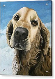 Gracie - Golden Retriever Dog Portrait Acrylic Print