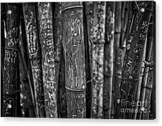 Graffiti Laden Bamboo Black And White Acrylic Print