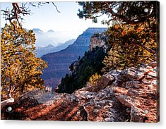 Acrylic Print featuring the photograph Grand Canyon 26 by Donna Corless