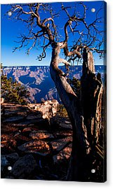 Acrylic Print featuring the photograph Grand Canyon 27 by Donna Corless