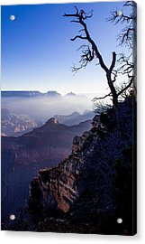 Acrylic Print featuring the photograph Grand Canyon 33 by Donna Corless