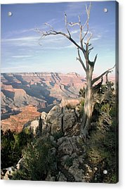 Acrylic Print featuring the photograph Grand Canyon 5 by John Norman Stewart