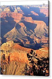 Grand Canyon 50 Acrylic Print