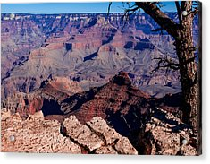Acrylic Print featuring the photograph Grand Canyon 7 by Donna Corless