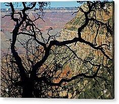 Grand Canyon 8 Acrylic Print